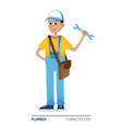 plumber standing character icon vector image