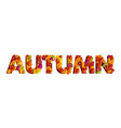 autumn typography design made with leaves vector image vector image