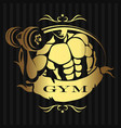 design for gym man with dumbbells vector image vector image