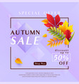 fashion violet autumn sale vector image vector image