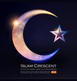 islamic crescent moon muslim religious sign vector image