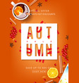 orange beautiful flyer for autumn sale vector image vector image