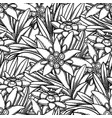 seamless pattern graphic edelweiss flowers and vector image