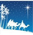 Shining star of Bethlehem vector image