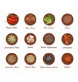 Different kinds of spices on wooden board vector image