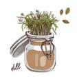 hand drawn dill microgreens healthy food vector image vector image