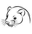 line ink ferret head simple vector image vector image
