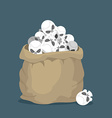 Sack of skulls Open bag with heads of skeletons vector image vector image