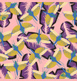 pattern with dragonfly on pink vector image