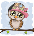 cute owl in a cap is sitting on a branch vector image vector image