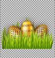golden easter eggs on green grass isolated on vector image vector image