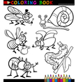 Insects and bugs for Coloring Book vector image vector image