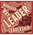 Leadership Development text background wordcloud vector image vector image