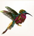 with realistic humming bird for vector image vector image