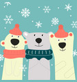 greeting card with three friends bears vector image