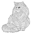 maine coon cat adult coloring page vector image vector image