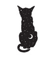 silhouette cat with crescent moon and stars vector image
