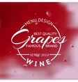 Red Wine glass and Bottle vector image