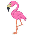 cute flamingo cartoon vector image vector image