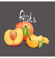 Juicy and fragrant peach vector image