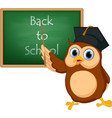 owl cartoon with chalkboard vector image vector image