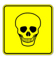 skull warning sign vector image vector image