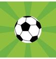 Soccer icon vector image vector image
