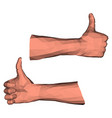 thumbs up gesture low poly vector image