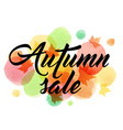 abstract background for autumn sale vector image
