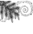 branch of spruce with cones vector image vector image