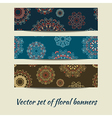 colorful set floral banners vector image