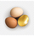 set of realistic white and brown whole chicken vector image vector image