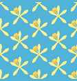 vanilla flower pattern vector image