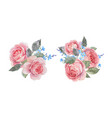 watercolor rose compositions vector image vector image