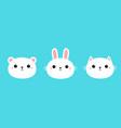 white bear cub rabbit bunny cat kitty kitten vector image vector image