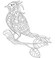 fantasy bird hand drawn doodle sketch for adult vector image