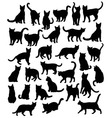 Cat Set Silhouettes vector image vector image