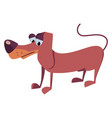 dog cartoon on white background vector image vector image