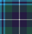 douglas tartan seamless pattern fabric texture vector image vector image