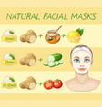natural facial masks cartoon vector image