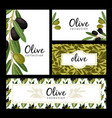 olive leaves and berries cards vector image vector image