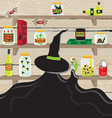 pantry witch vector image vector image