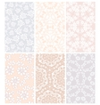 Set of lace vector image vector image