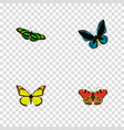 set of moth realistic symbols with lexias precis vector image vector image