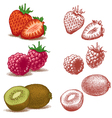 Strawberry raspberry and kiwi vector | Price: 3 Credits (USD $3)