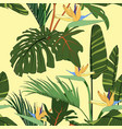 tropical flowers palm leaves jungle leaves vector image