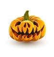 angry pig pumpkin vector image