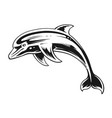 dolphin black and white contrast art vector image