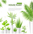 realistic 3d detailed house plant concept banner vector image vector image