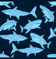 shark pattern nautical ocean sea scare big fish vector image vector image